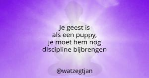Je geest is als een puppy, je moet hem nog discipline bijbrengen