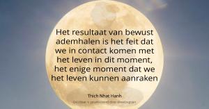 Het resultaat van bewust ademhalen is het feit dat we in contact komen met het leven in dit moment, het enige moment dat we het leven kunnen aanraken. – Thich Nhat Hanh